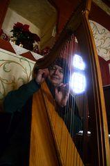 Harfenspieler auf dem mittelalterlichen Weihnachtsmarkt der Ronneburg # 7306