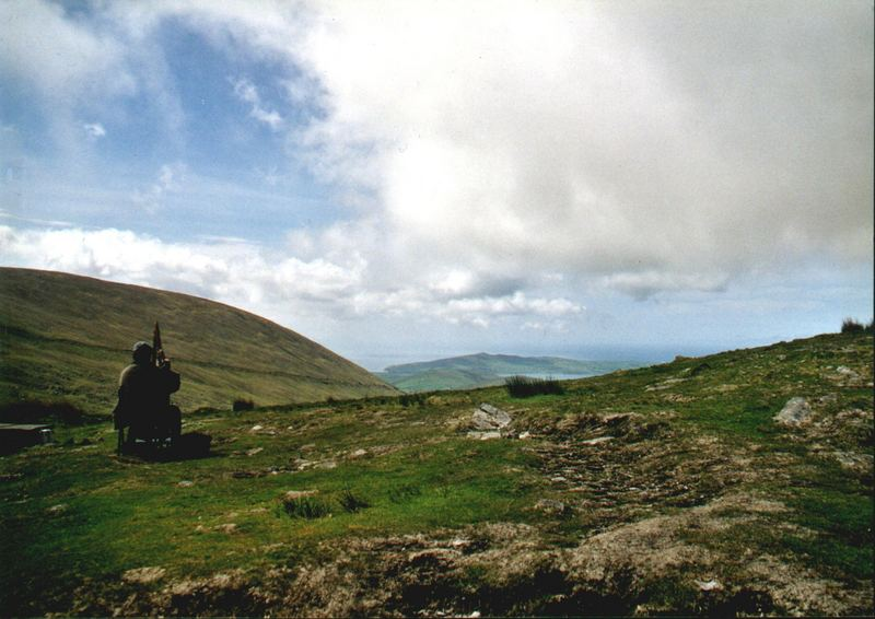 Harfner in Irland