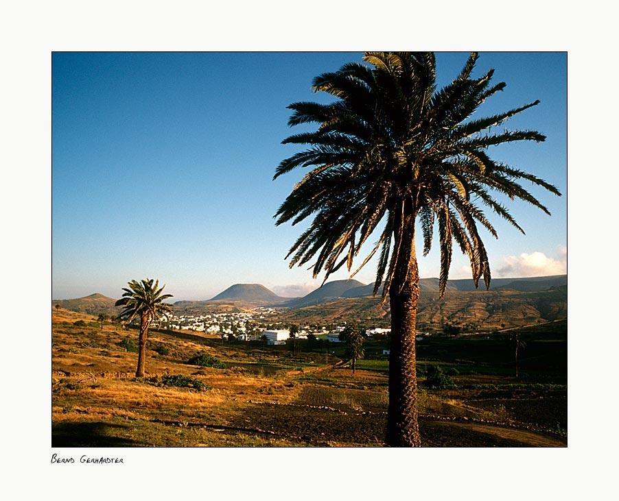 """""""Haria"""" das Tal der 1000 Palmen, 2"""