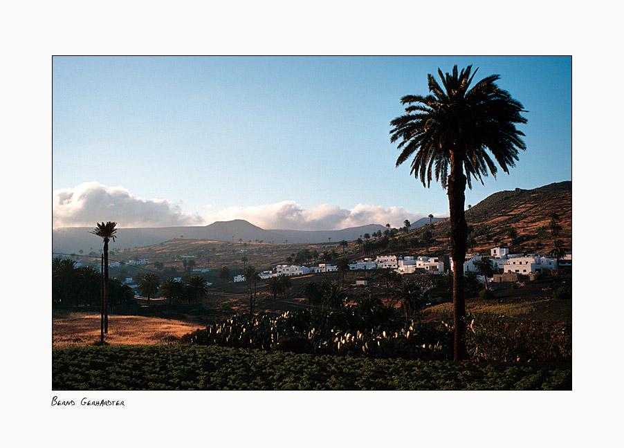 Haria, das Tal der 1000 Palmen