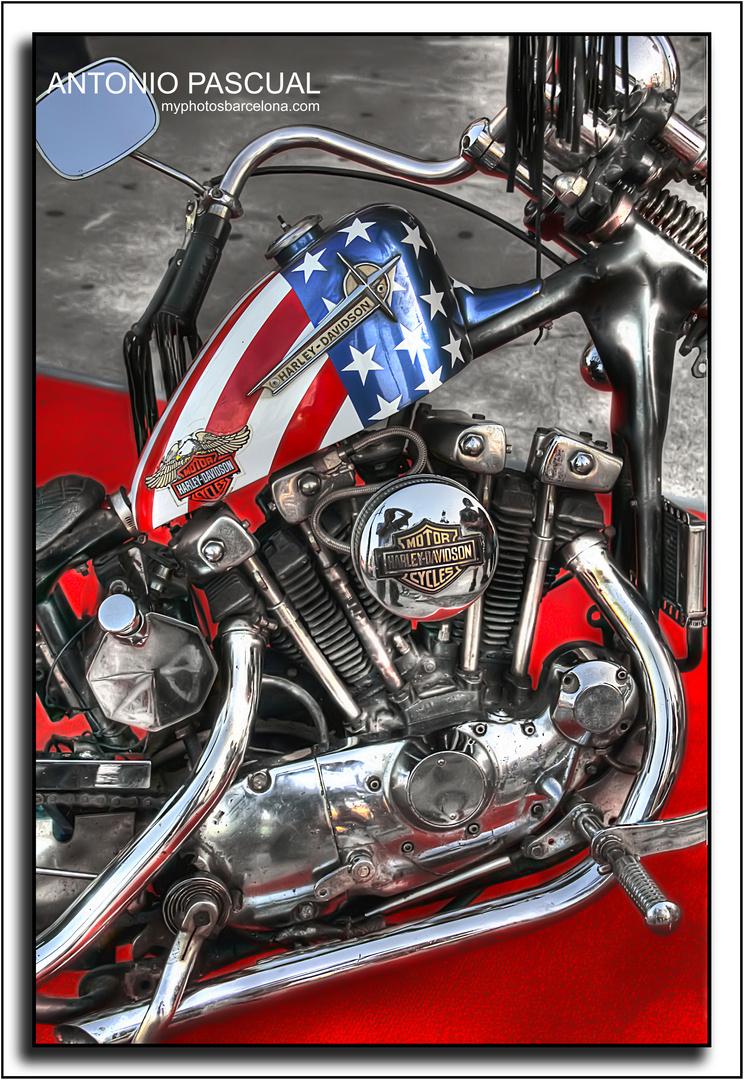 Harley Barcelona 2 (2012)