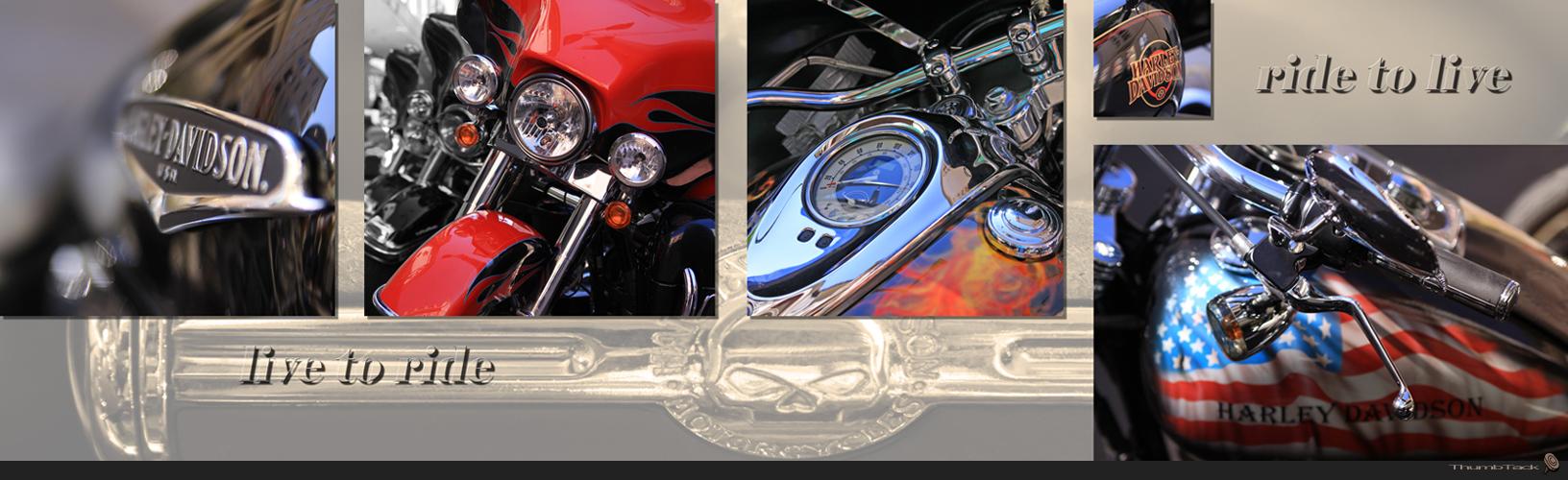 * Harley Davidson 2 *