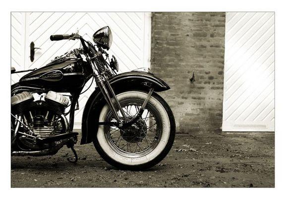 [ Harley Davidson ]