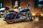 Harley Davidson (5)