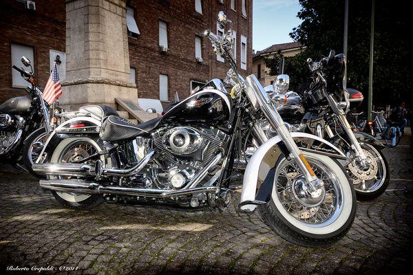 Harley Davidson a Pavia