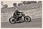 Harley Davidson - Only for hard Boys
