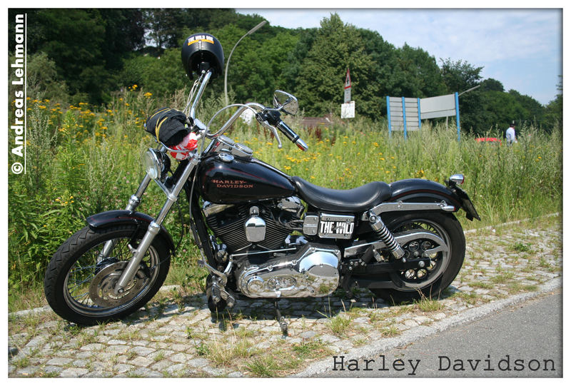Harley Davidson - The wild thing ...