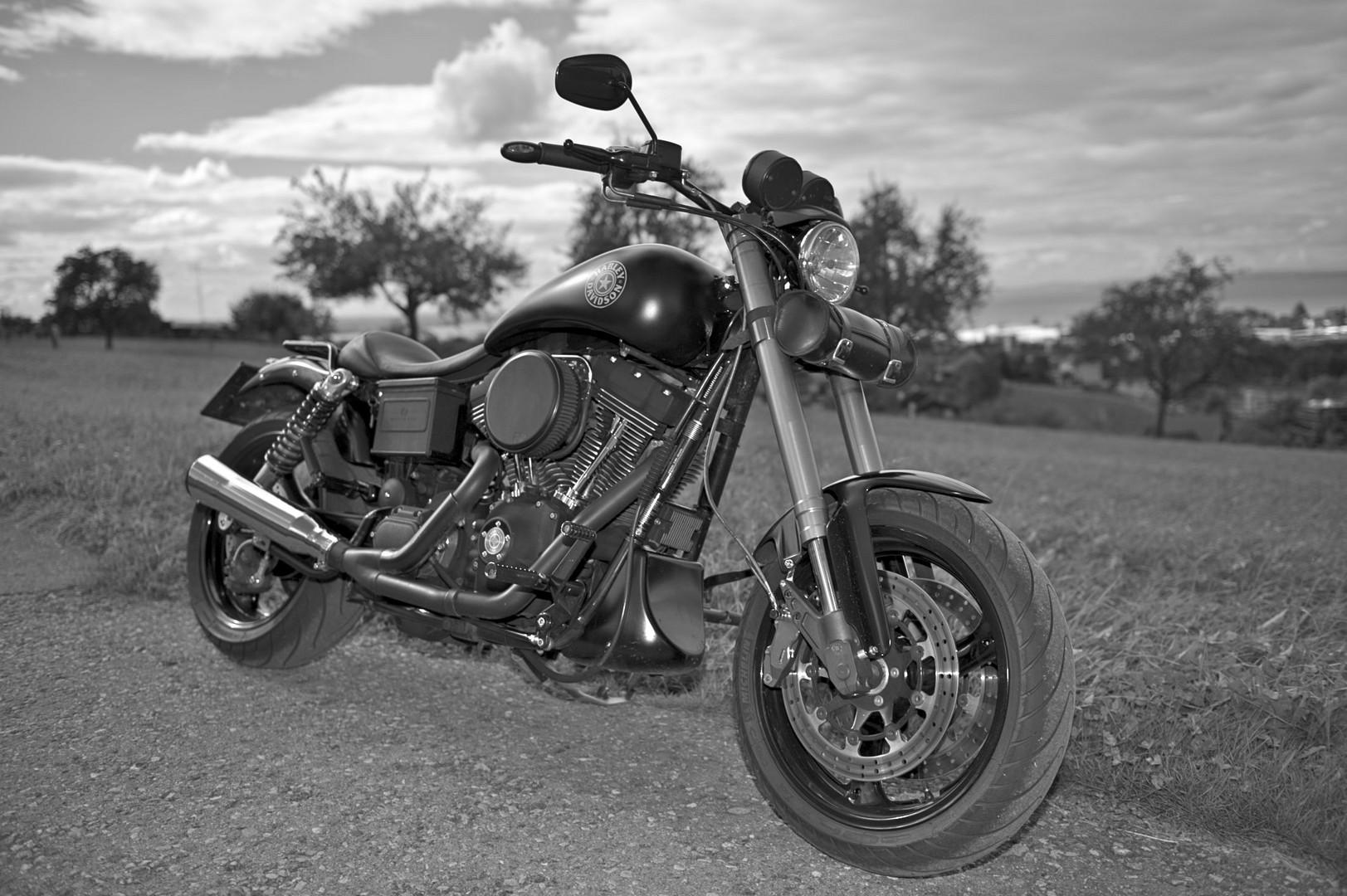 Harley Dyna FXDX Sport