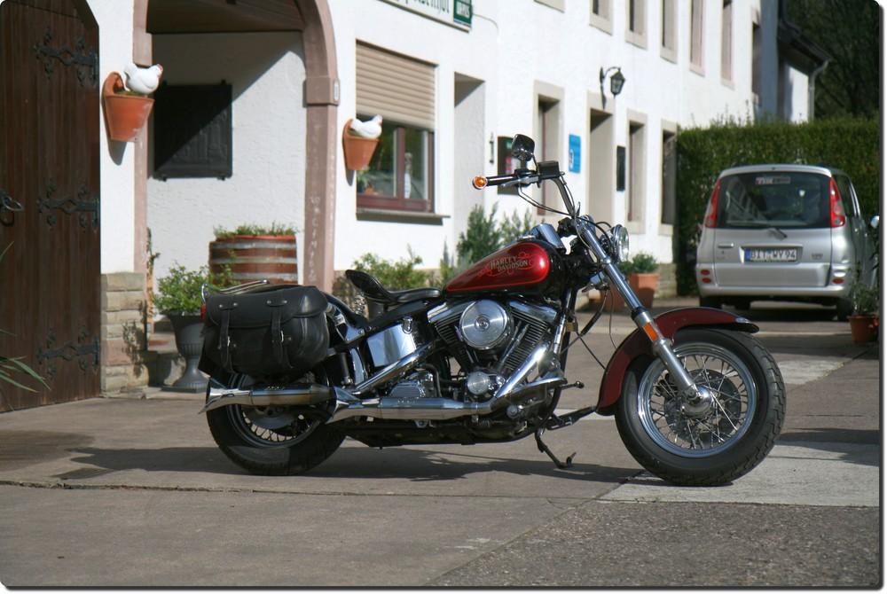 Harley im Sonnenschein
