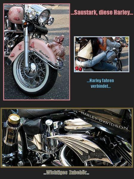Harley, selektiv wahrgenommen