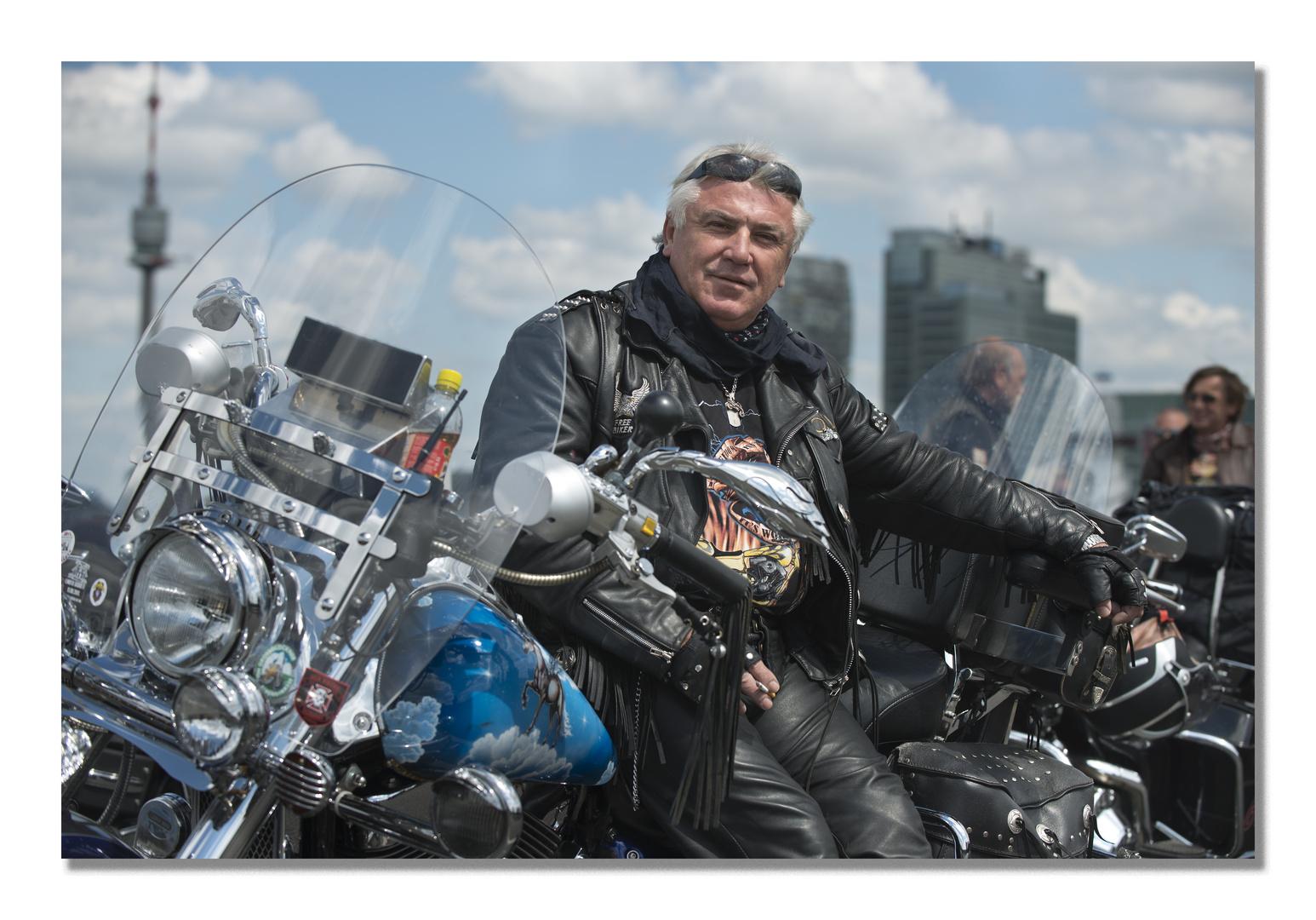 Harley Vienna 3