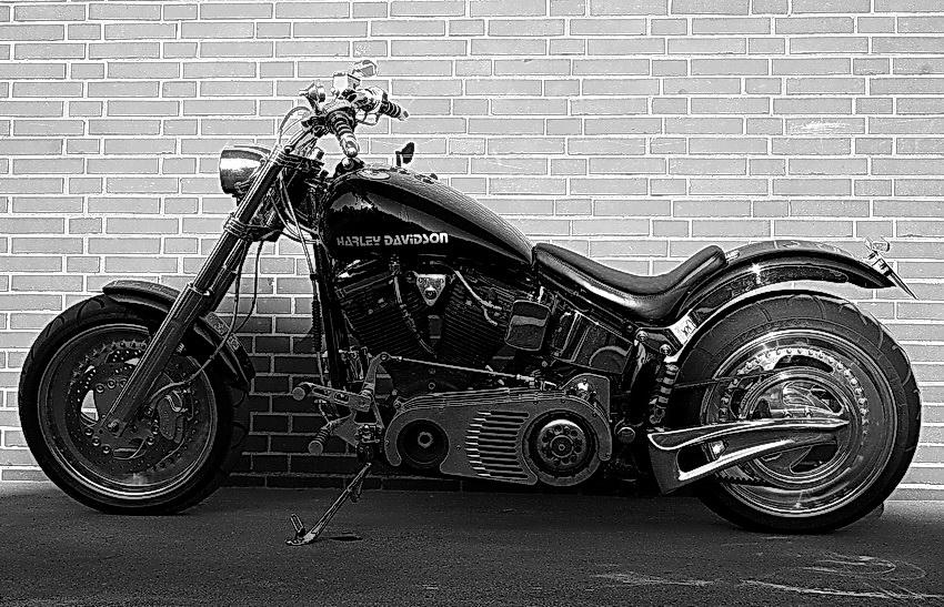 Harleyluja