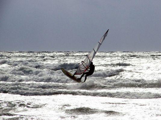 Hart im Wind