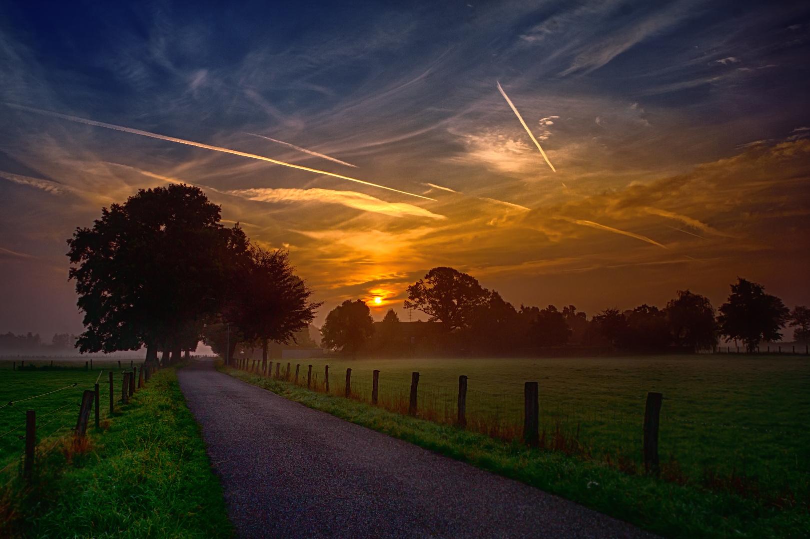 Hartefeld am frühen Morgen