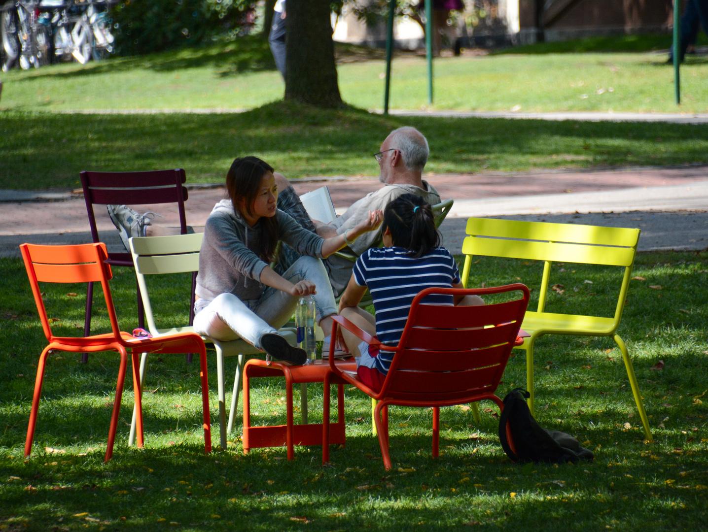 Harvard Campus II