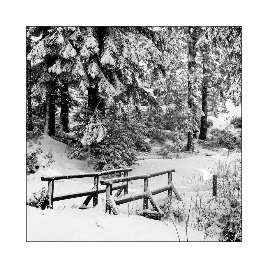 Harz 01