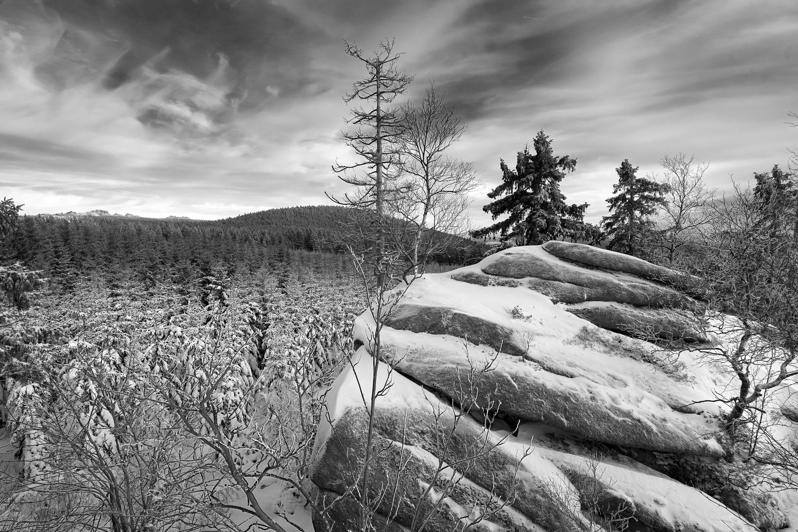 Harz im Winter 3