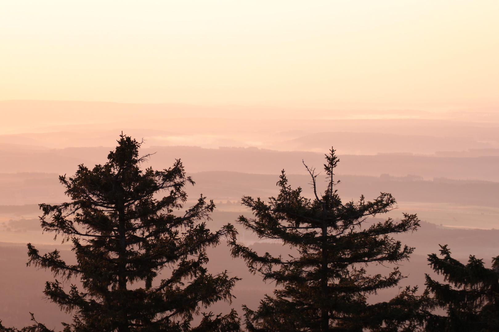 Harz Impression bei Sonnenaufgang