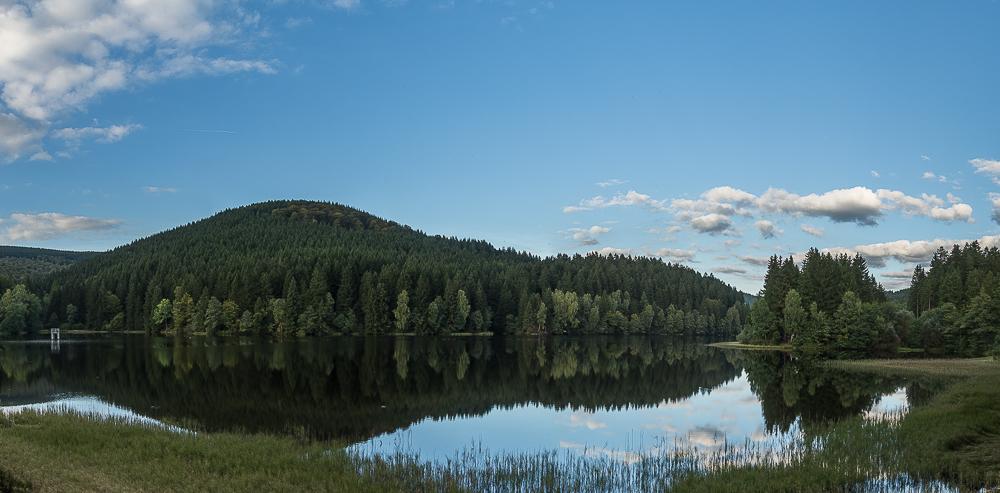 Harzer Landschaft 2