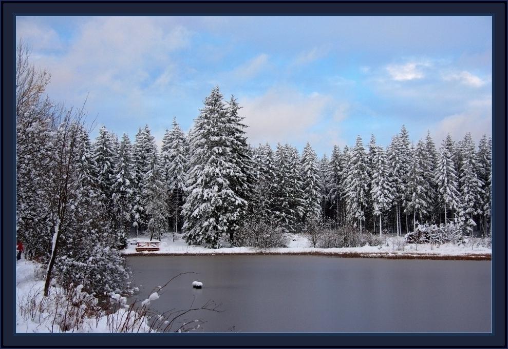 Harzer Marienteich im November-Schnee