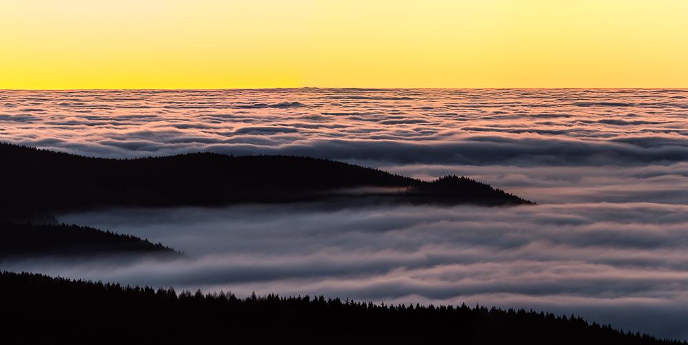 Harzer Nebelmeer