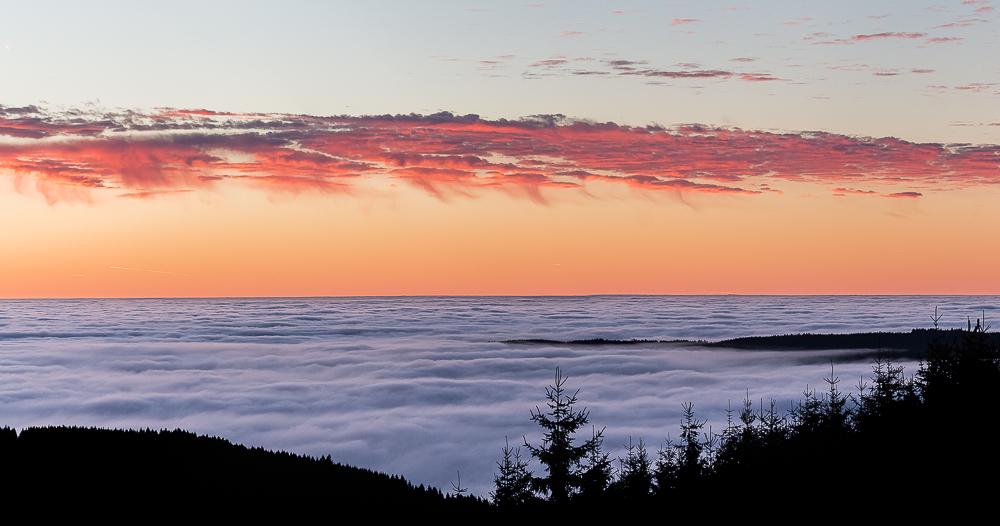 Harzer Nebelpanorama