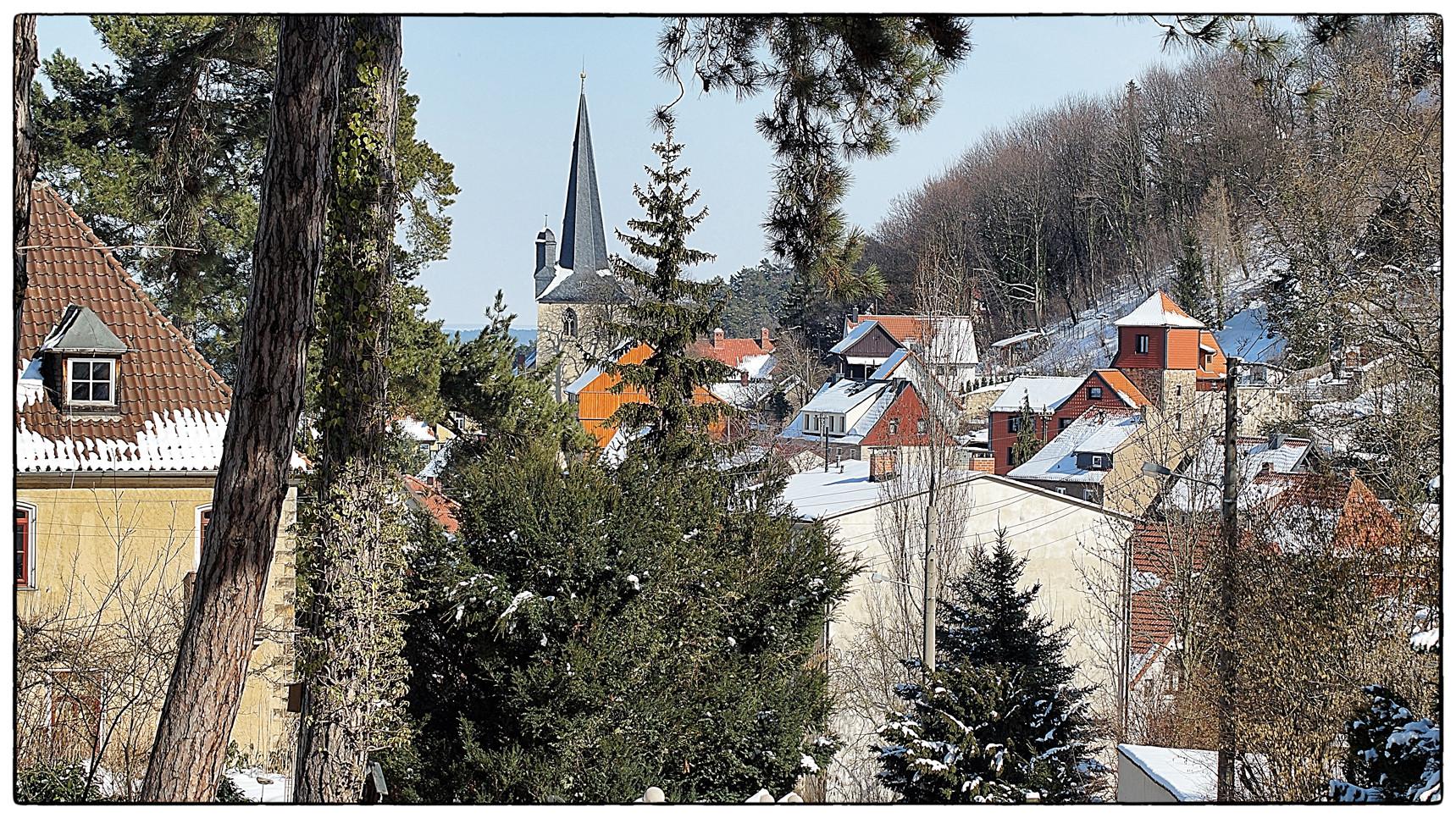 Harzer Winterdächer