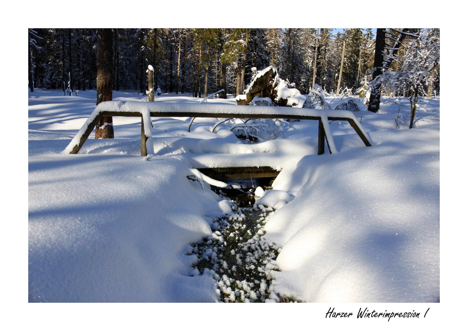 Harzer Winterimpression I