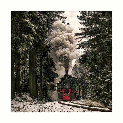 """Harzimpressionen """" Auf den Spuren der Harzer Schmalspurbahn......"""""""