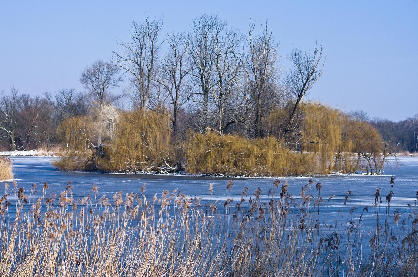 Haselbacher Teiche