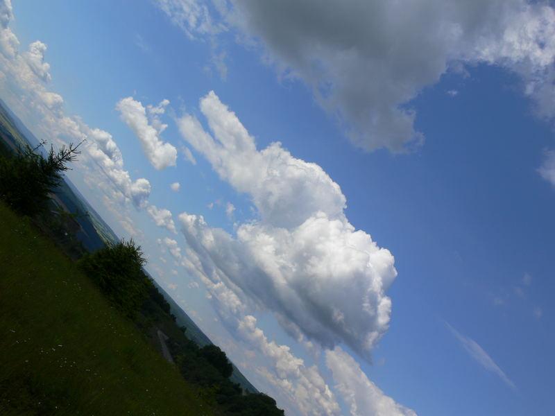 Hasen-Wolke