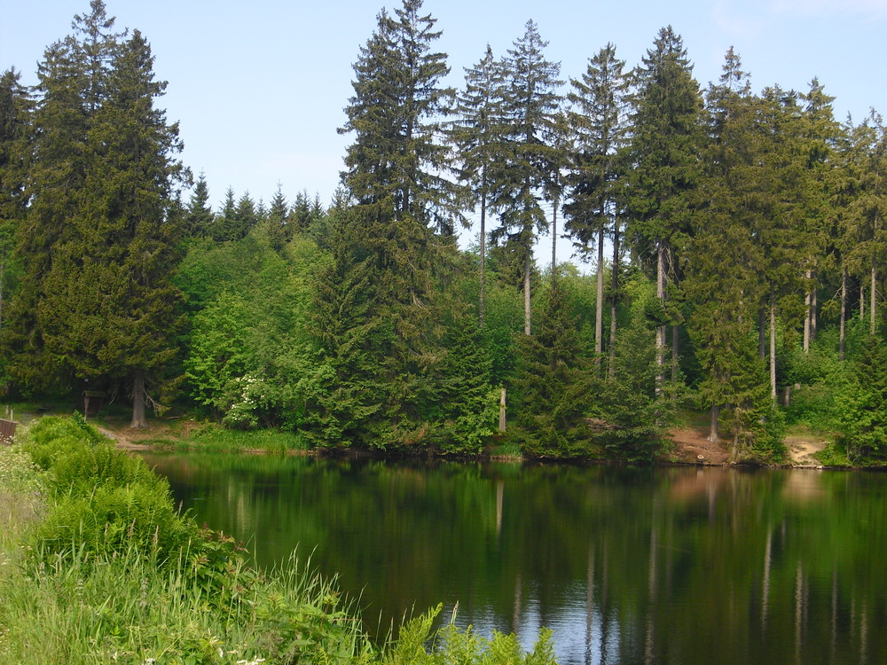 Hasenbach Teich