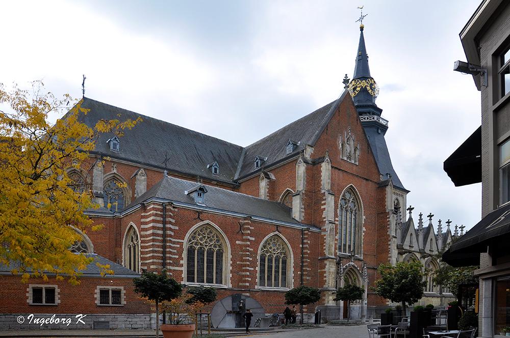 Hasselt - St. Quintinius-Kathedrale