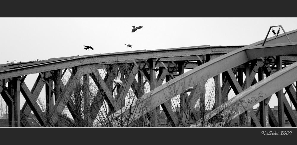 Hassen an der Brücke