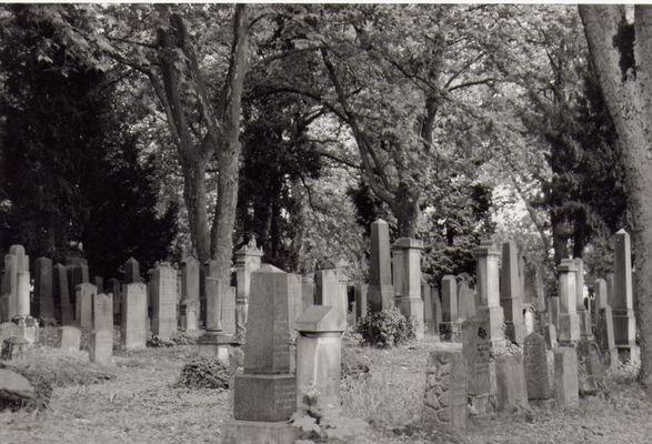 Hauptfriedhof In Wien