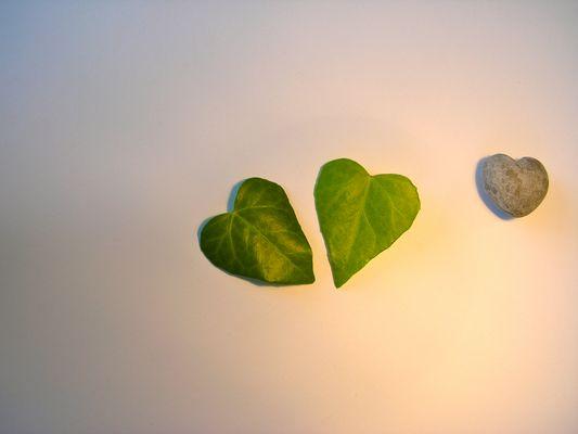 Hauptsache Herz
