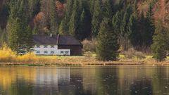 Haus am Almsee