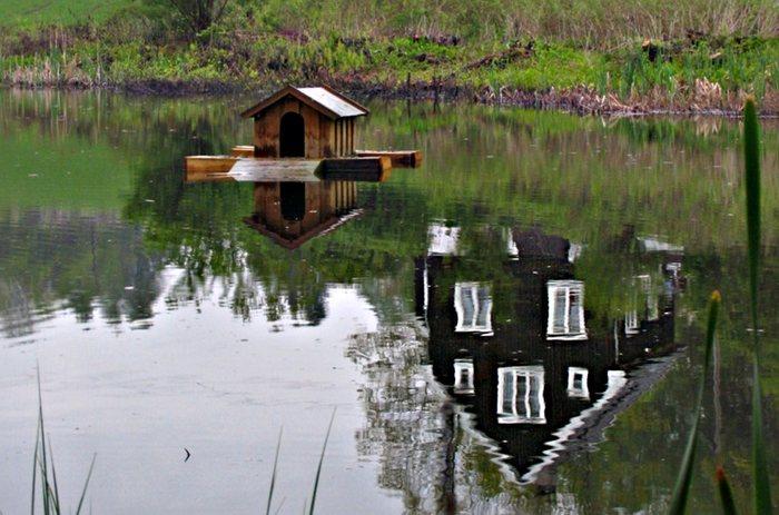 Haus am/in Wasser
