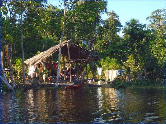 Haus der Warao Indianer....