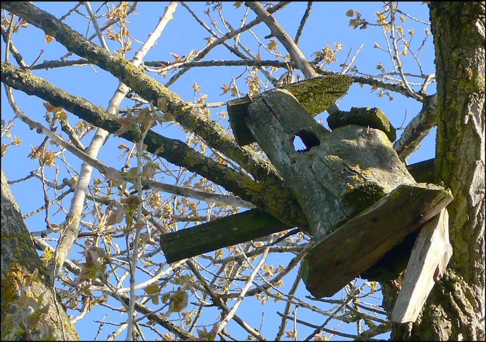 Haus für schräge Vögel