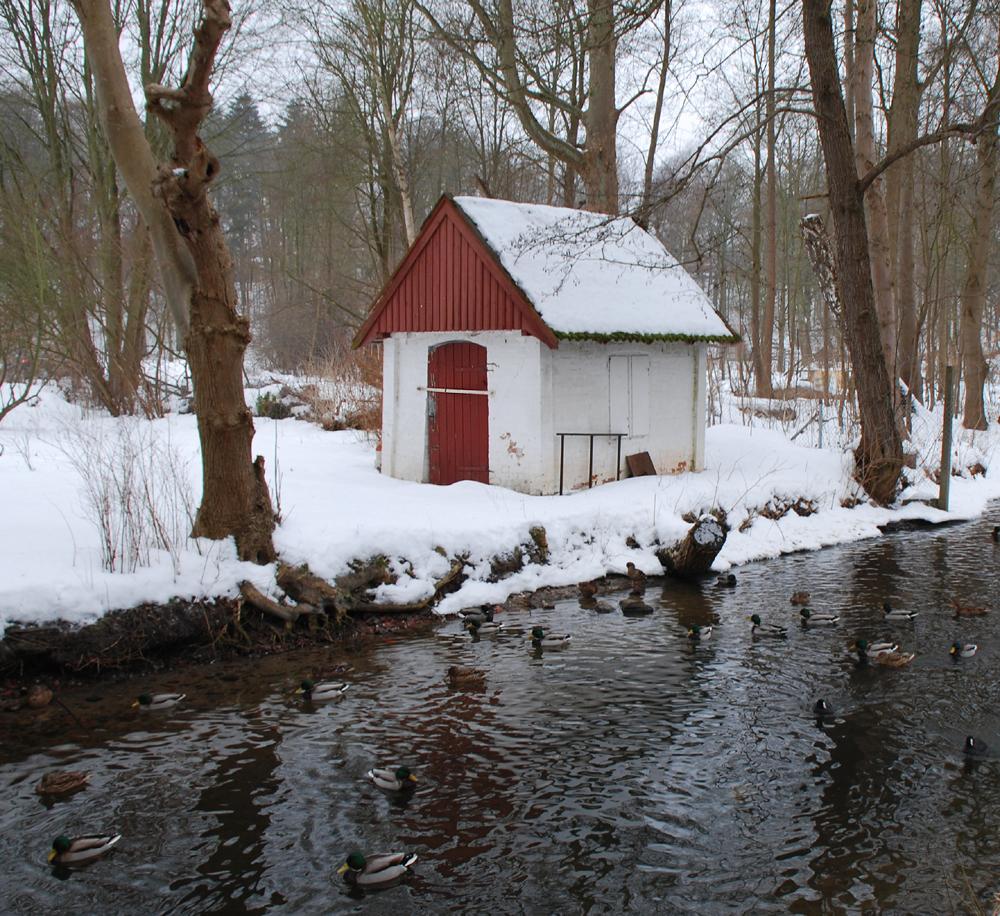 Haus im Wald- immer noch auf den Frühling wartend