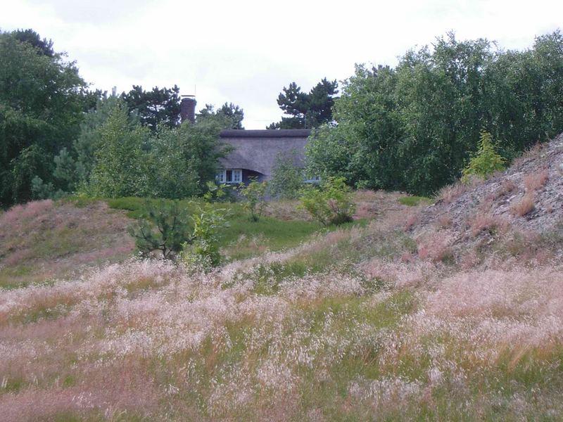 Haus in den Dünen auf Spiekeroog
