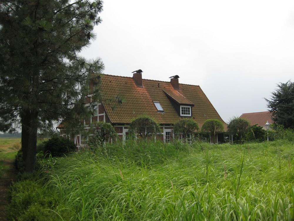 Haus in Reitbrook