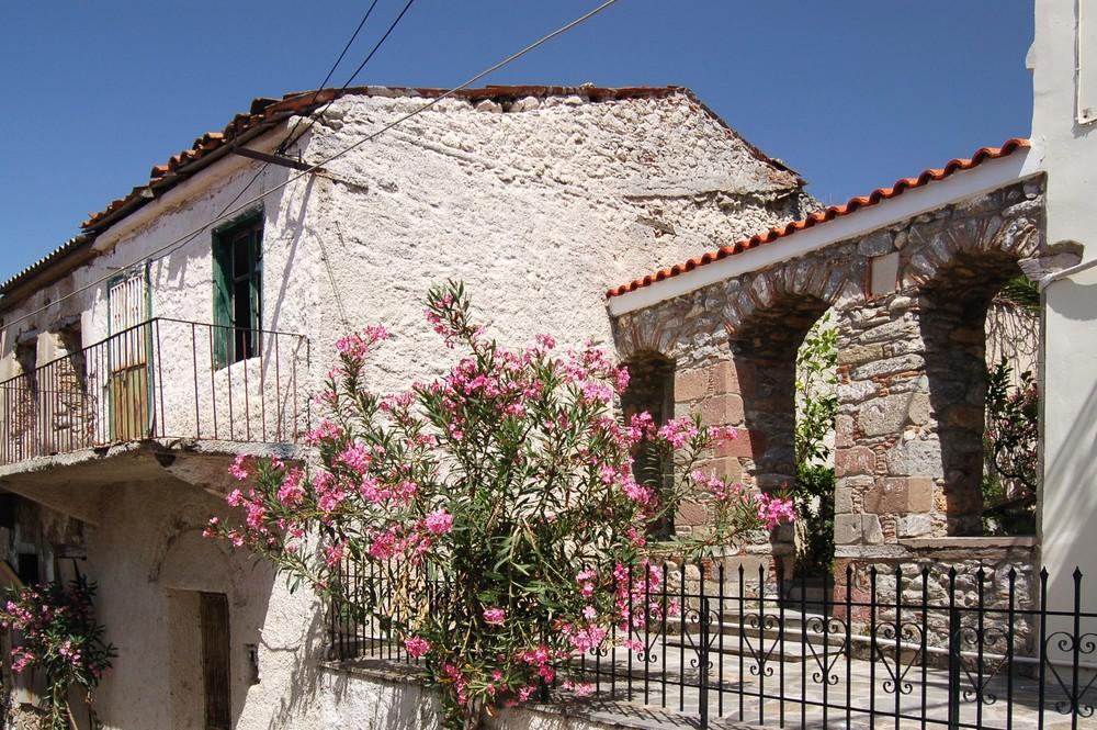 Haus mit Oleanderbusch