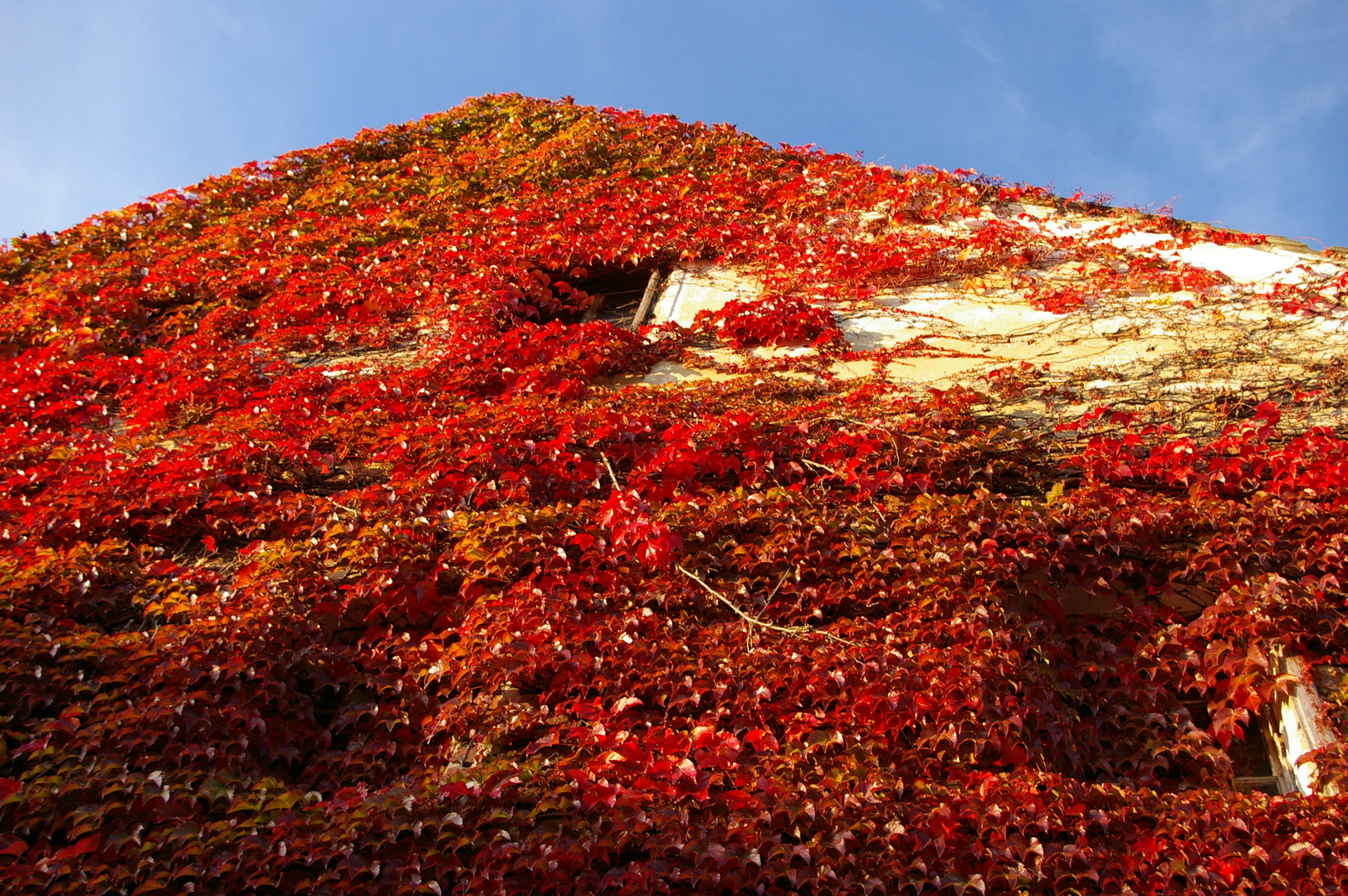 Hausfassade in Rot