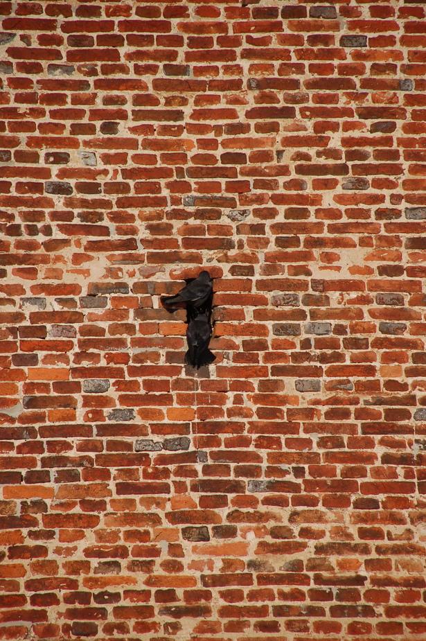 Hausnummer 1 - wer kann es erkennen?