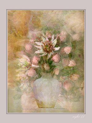 Hauswurz in Vase