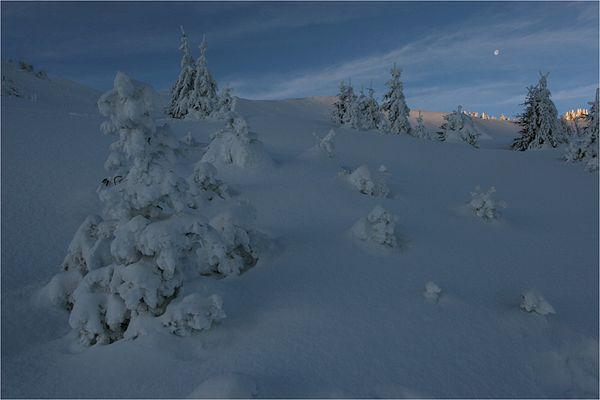 Hautachia im Winter