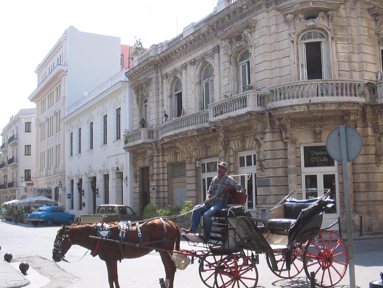Havanna zu Pferd