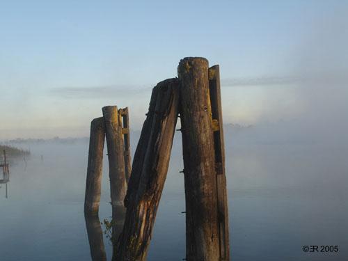 Havel im Morgennebel 2